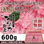【焼肉セット】送料無料《黒毛和牛特選 霜降り焼肉セット 600g:A5等級和牛》a5 和牛《焼肉 セット 送料無料》焼肉 セット 国産