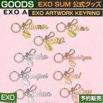 【1次予約】 SM EXO ARTWORK KEYRING / SUM 公式グッズ / ddp / artium【日本国内発送】