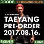 BIGBANG TAEYANG FIGURE 12inch / YG �������å� /BIGBANG FIGURE/���ܹ���ȯ��/1��ͽ��/����̵��
