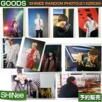 SHINee RANDOM PHOTO(21x26cm) / SUM DDP ARTIUM SM 日本国内配送/1次予約
