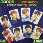 EXO ELYXION PHOTOCARD �����ǥե��ȥ����� / SUM / DDP / ARTIUM /1��ͽ��