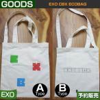 EXO CBX ECOBAG / SM SUM ARTIUM DDP /1次予約