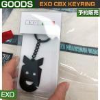 EXO CBX KEYRING / SUM DDP ARTIUM /当日発送