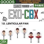 12. LENTICULAR FAN / CBX [SUMMER VACATION] FAN GOODS / 1808cbx /1��ͽ��