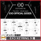 EXO PLANET #3 The EXO��rDIUM [dot] ��˥ե����७��������С������� 2017EXO PLANET #3 The EXO��rDIUM[dot] �����륳���� �������å�