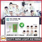 GOT7 MINI LIGHT KEYRING JYP OFFICIAL goods got7 公式応援グッズ アガボン