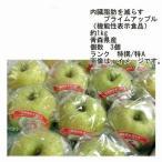 送料無料 王林 内臓脂肪を減らす プライムアップル 青森県産 約1kg 3玉入 ランク 特撰/特A