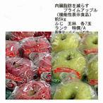 送料無料 ふじ 王林 りんご 内臓脂肪を減らす プライムアップル 青森県産 約5kg 各7玉入 ランク 特撰/特A/秀