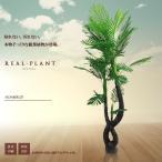 即納 観葉植物 造花 リアルプラント07 大型 人工 部屋 リアル 会社 緑 おしゃれ インテリア フェイクグリーン ET-KUI-E7-185