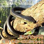 ドッキリ ヘビ ダミースネーク 1.3m 蛇 ジョークグッズ ET-DMSNK