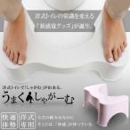 即納 うまくしゃがーむ トイレ 洋式 和式 しゃがむ 座る 体勢 踏み 台 便所 お手洗い マンション しゃがみ込む ET-FUMIFUMI