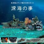 沈没船 サンゴ礁 2種類セット アクアリウム 水槽 オブジェ オーナメント 水中 テラリウム ジオラマ リアル 模型 船 おしゃれ 男前 インテリア 2-SINKAI