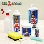 洗浄魂+バキュームクリーナーセット 半額以下 大掃除に最適 風呂洗剤 ショップジャパン 正規品