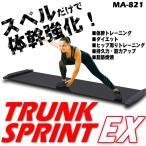 体幹 トレーディング トランクスプリントEX スライドボード  スライディングボード 有酸素運動 ダイエット送料無料