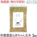 薬膳のお米 1kg 栄養価の高い赤ちゃん玄米 無農薬 無化学肥料 西日本産 ※パッケージ変更がある場合がございます。中身は一緒です。
