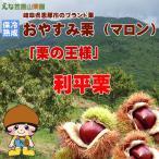 shoptakumi_enakuri003