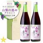 飲むぶどう酢 熟成ワインビネガー 日経ウーマン全国「飲む酢ランキング」1位 ギフト 山梨の恵みダイエット 2本入り