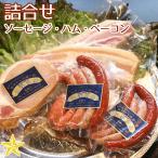 ピクニック気分 お楽しみセット 5種ソーセージ ベーコンステーキ カスラハム