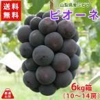 ぶどう ピオーネ 山梨県産 送料無料 農家直送 種なしブドウ 高級品種 ピオーネ6kg箱 (10〜14房)
