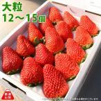 いちごのお取り寄せ 山梨のイチゴ 農家から朝採れ直送 贈答用 大粒サイズ 12〜15個入り1パック