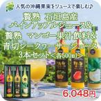 沖縄 果実ジュース 500ml×3本 飲み比べギフトセット パイナップル シークワーサー マンゴー飲料 産地直送 お客様 内祝 出産祝い お返し 贈り物 贈答 父の日