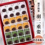 ひと箱で3種類味わえる 福井銘菓 羽二重姿 24個入り(白8個+きなこ8個+よもぎ8個)