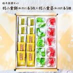 福井伝統銘菓セット 羽二重餅(白)(きなこ)各5枚+羽二重姿餡入(白)(よもぎ)各5個