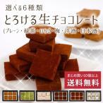 バレンタイン 選べる6種類 とろける生チョコレート(プレーン・緑茶・いちご・梅・洋酒・日本酒)