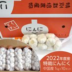 にんにく 中国産 生鮮にんにく1kg×10入 特栽 上海嘉定種 食用 ホール 種子 水耕栽培
