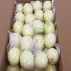 【冷蔵】ムキ玉葱(2L)真空パック 10kg 中国産