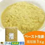 【冷凍】ペースト生姜 1kg 高知県産