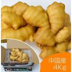 生鮮生姜 中国産 黄金生姜 4kg(近江生姜 黄色) /野菜 いかなごのくぎ煮 はつがつお
