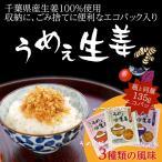うめぇ生姜エコパック(鰹・しそ・梅) 135g 3種セット ゆうパケット送料無料[ご飯のお友] つく日