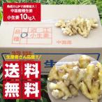 【種生姜】中国産 小生姜 10kg 送料無料(沖縄、離島を除く)