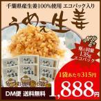 うめぇ生姜135g(かつお風味)6袋 DM便 ふりかけ 万能調味料 ポイント消化