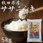 秋田県産 ササニシキ 5kg 令和元年産 米 あっさり あまみ お取り寄せグルメ