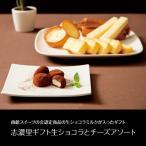北海道 志濃里ギフト生ショコラとチーズアソート 送料無料 産地直送 洋菓子 スイーツ 詰め合わせ グルメ ギフト 贈りもの