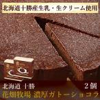 花畑牧場 濃厚ガトーショコラ(170g) 2個セット 冷凍ケーキ 北海道 お取り寄せスイーツ 送料込み スイーツ 洋菓子