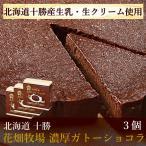 花畑牧場 濃厚ガトーショコラ(170g)  3個セット 冷凍ケーキ 北海道 お取り寄せスイーツ 送料込み スイーツ 洋菓子