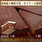 花畑牧場 濃厚ガトーショコラ(170g) 5個セット 冷凍ケーキ 北海道 お取り寄せスイーツ 送料込み スイーツ 洋菓子