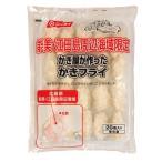 冷凍カキフライ ニッスイ かき屋が作ったカキフライ 広島県産牡蠣 20個入 計500g 冷凍食品 業務用