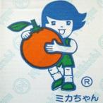 (優グレード)ミカちゃんマークの「静岡:三ケ日青島みかん」2Lサイズ 9kg