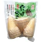 筍 静岡県加工 たけのこ水煮 500g