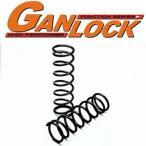GANLOCK コイルスプリング・ビックホーン4DR(UBS25.69系) 2インチアップ(リア)