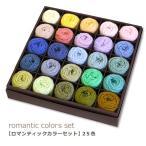 編み物 リッチモア パーセントMINI 25色セット 2ロマンティック 期間限定SALE 