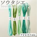 ビーズ 糸・コード ソウタシエ ブレード アソート フォレストmix|期間限定SALE|