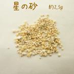 粘土 UV樹脂 星の砂 約2.5g|UVレジン|星砂|貝がら|シェルパーツ|