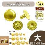 レザー 副資材 ブラス 真鍮 金具 ブラスバネホックボタン 10組入 No.5 大/12.6×5.8mm B