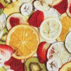 カットクロス アスティンムーラー ミックスフルーツ オックス 50cm|生地 布 布地  はぎれ カット布 カットクロス いちご フルーツ 果物 オレンジ レモン