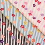 生地 綿布 桜ストライプパール ドビー AP81701-1 和柄 桜 さくら ストライプ 縞 ピンク 1m単位の切売り